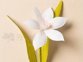 如何用皱纹纸折水仙花 水仙花的折法图解