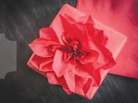 如何折纸一品红 手工折纸圣诞红的折法图解