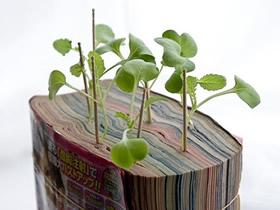 书本花盆手工制作 旧书DIY花盆的创意