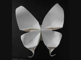 蝴蝶的折法图解教程 怎么折纸蝴蝶的方法