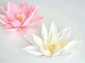怎么做皱纹纸荷花图解 皱纹纸手工制作莲花