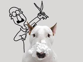 恶搞狗狗的创意画图片 创意狗狗恶搞画作品