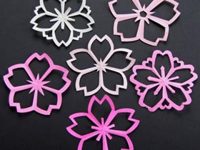 怎么剪纸樱花的方法 樱花的折法和剪法图解