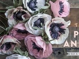 怎么做银莲花的方法 手工制作银莲花图解