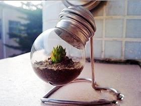 怎么把灯泡做成花盆 简单灯泡花盆手工制作