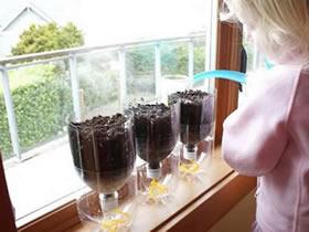 怎么做自动浇水花盆 可乐瓶DIY花盆自动浇水