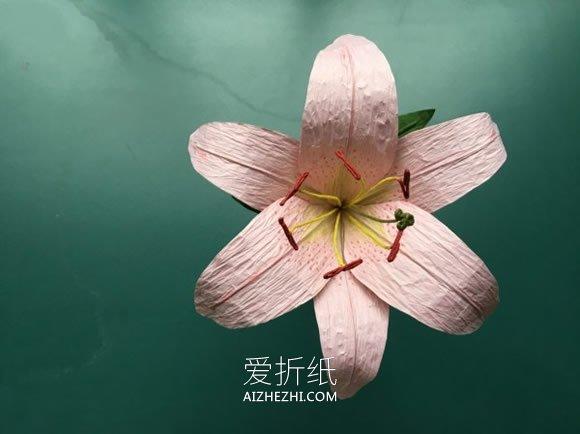 怎么做纸藤百合的方法 纸藤手工制作百合花- www.aizhezhi.com