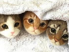 羊毛毡做的超萌小猫咪 可爱羊毛毡小猫图片
