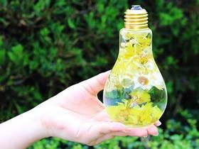 怎么做灯泡装饰品图片 灯泡变废为宝DIY饰品