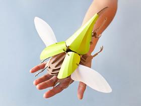 漂亮装饰品!瓦楞纸手工制作昆虫模型图片