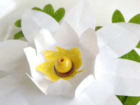 怎么做白莲花的方法 简单手工制作白莲花图解