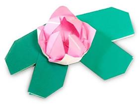 怎么简单折纸水莲花 儿童手工水莲花的折法