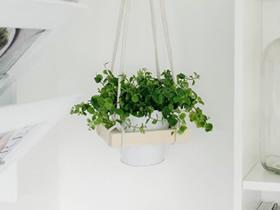 怎么做悬空花架的方法 旧相框制作空中花架