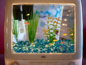 怎么用旧显示器DIY制作水族箱的方法