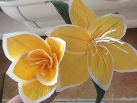 怎么做两层花瓣的双色皱纹纸百合花图解教程