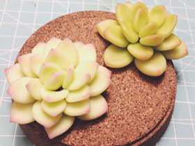 怎么做树脂粘土多肉植物的制作方法图解