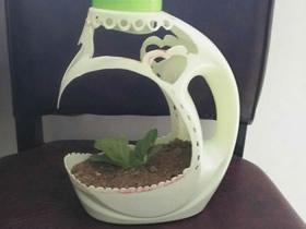 怎么用洗衣液瓶做花盆的手工制作教程