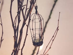 怎么用瓶盖和铁丝做迷你鸟笼挂饰的制作方法