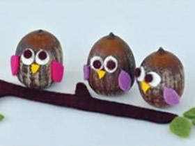怎么用橡子做猫头鹰的制作方法 简单又可爱!