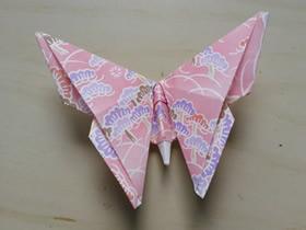 怎么折纸复杂蝴蝶的图解教程