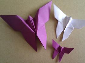 简单折纸蝴蝶的方法图解