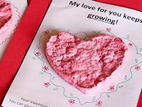 带有种子的创意情人节爱心贺卡DIY