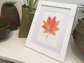 用水彩画枫叶做装饰画的教程