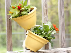 创意花盆摆放改造方法图解