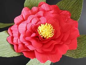 用皱纹纸做牡丹花的方法