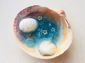 贝壳里的大海-用贝壳做精美手工艺品的方法