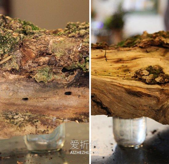 用枯木做插花花瓶的方法- www.aizhezhi.com