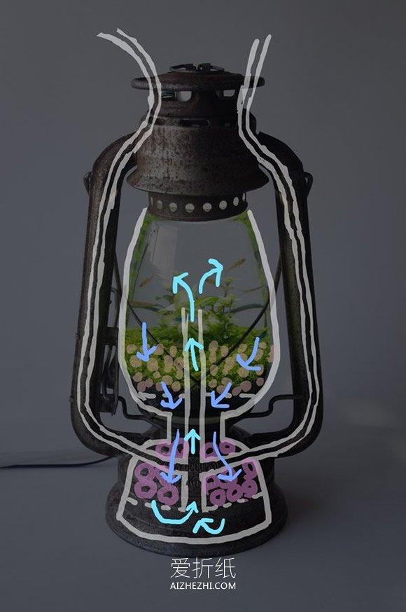 怎么用煤油灯改造水族箱的方法- www.aizhezhi.com