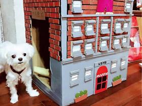 怎么用大纸箱做狗窝的方法图解