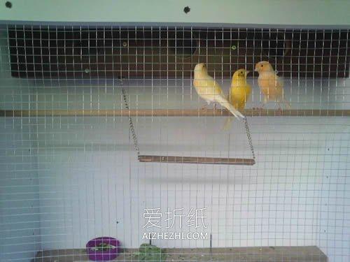 怎么用旧书柜做大型鸟笼的方法图解- www.aizhezhi.com
