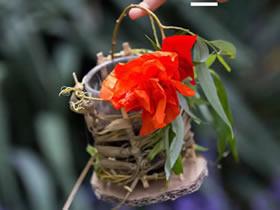怎么用草编织花篮的方法图解