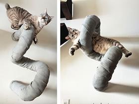 怎么做猫爬架的创意作品图片
