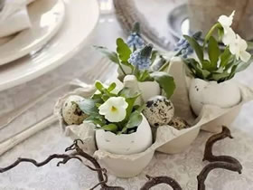怎么用鸡蛋壳做花盆的方法图解