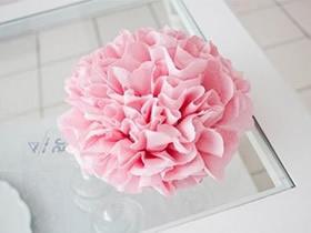怎么用皱纹纸做母亲节康乃馨花的方法图解