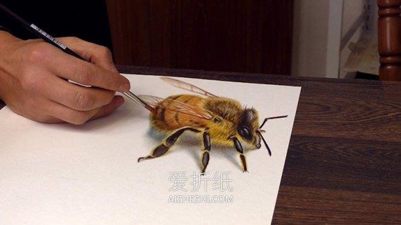 怎么画超逼真3D立体画的图片大全- www.aizhezhi.com